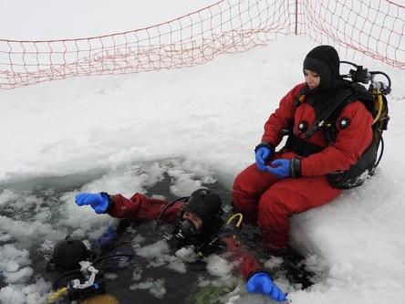 plongee sous glace